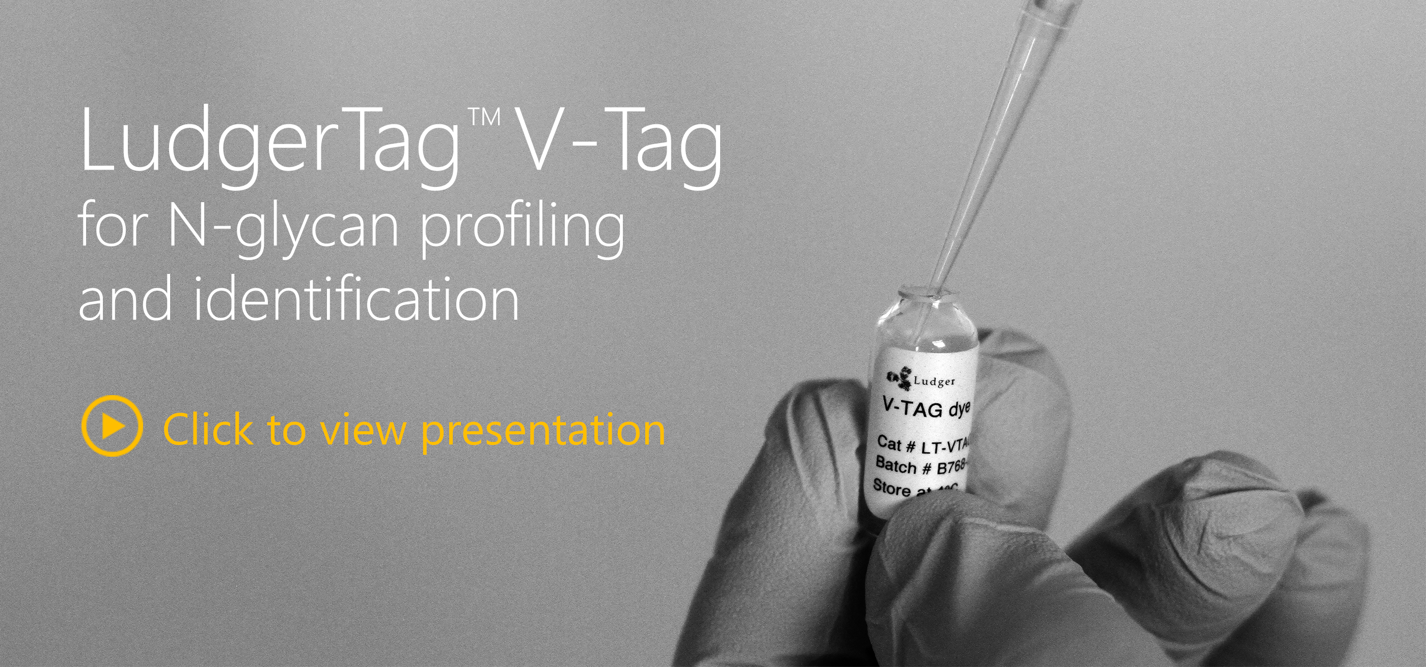 ludger v-tag glycan release and labeling kit
