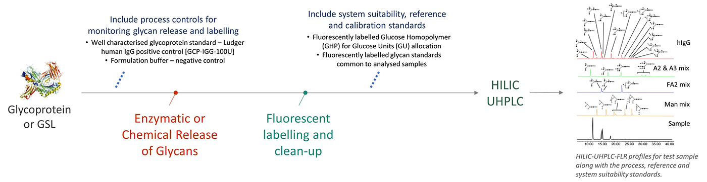 Ludger - Glycan Analysis - Workflow for Level 1 HILIC profiling